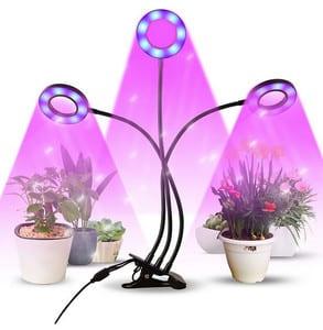 Avis lampe de plante Infinitoo