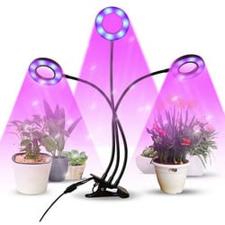 Test lampe de plante Infinitoo