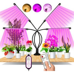 Test lampe horticole Eweima 80 LEDs