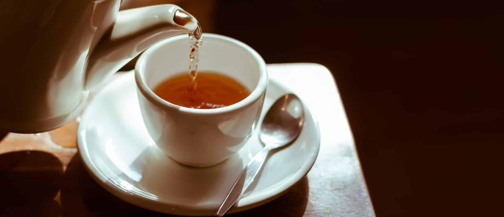 Comparatif pour choisir le meilleur thé bio